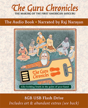 The Guru Chronicles (Audio Book)